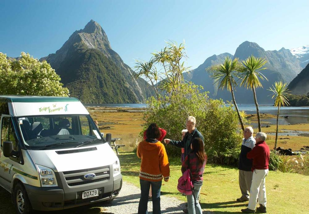 Our local guides pass on their insights into Milford Sound